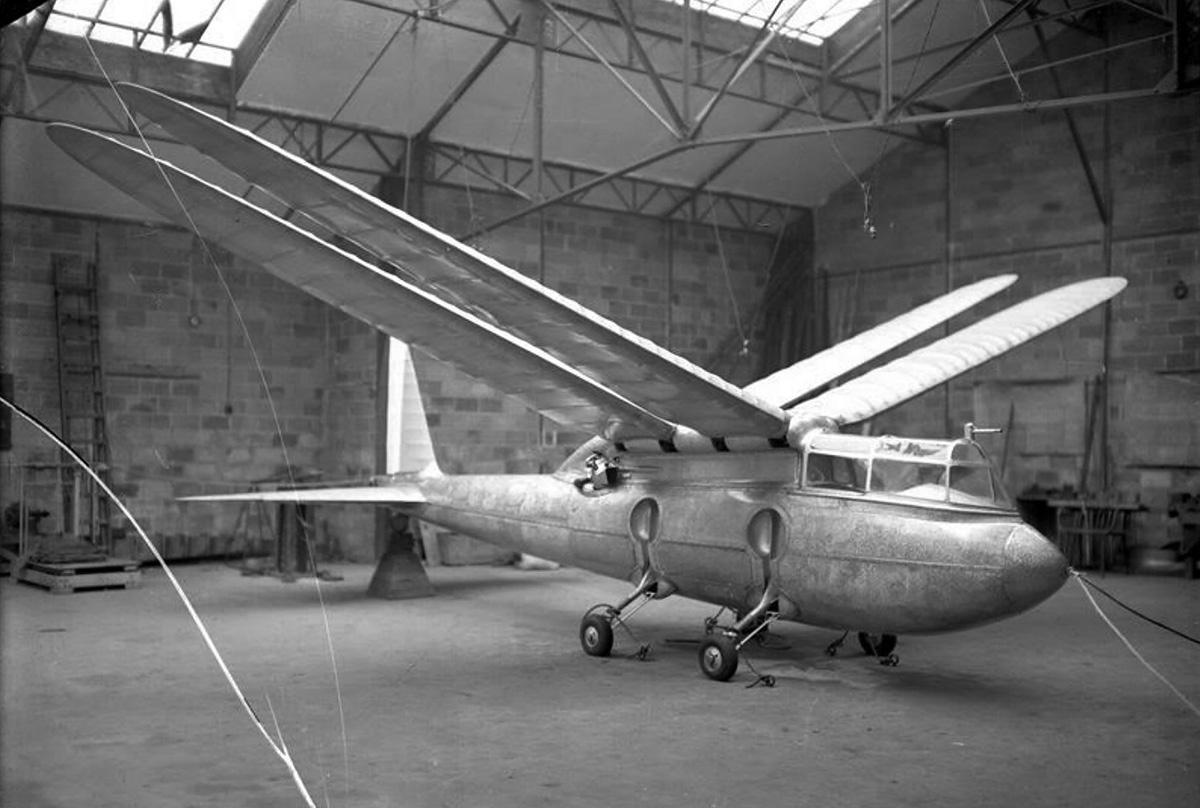 Riout 102T Alérion Ornithopter.jpg