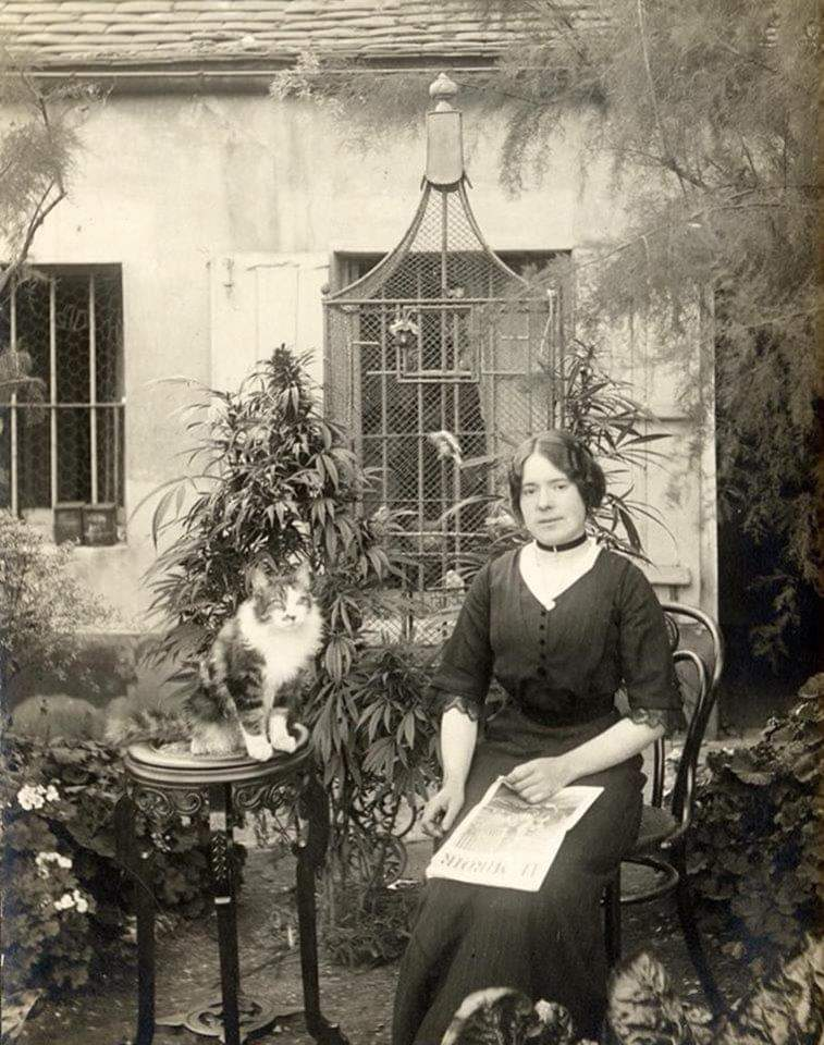 Parisian woman with her cat in her cannabis garden, 1910, France.jpg